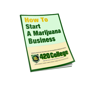 education for cannabis business