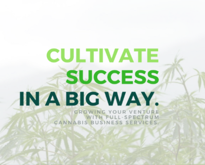 cannetic group cannabis consultant