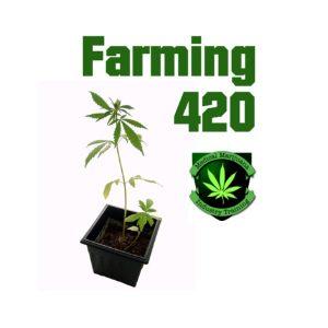 California Marijuana Cultivation