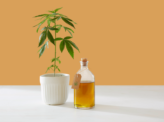 Is CBD Still Legal After FDA Chief Resignation