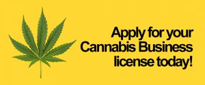 apply for cannabis business license