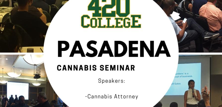 how to start a cannabis CBD business