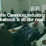 Medical cannabis business license